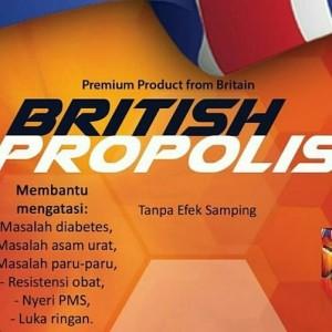 Britis Propolis dari Inggris